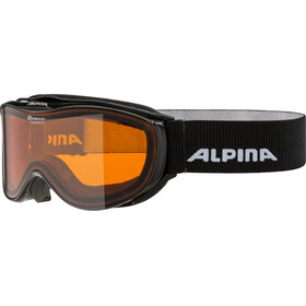 Alpina Challenge 2.0 Doubleflex S2 Lunettes de protection, black transparent